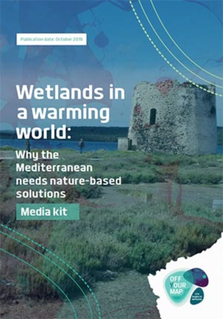 wetland in warming world